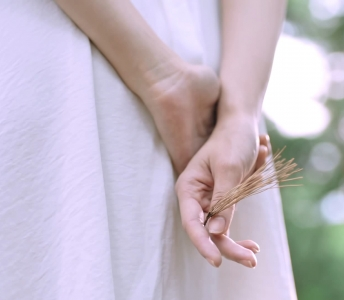 "HANYUL ""갈색솔잎 이야기"""